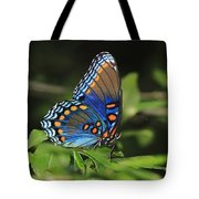 All The Colors Of The Sunset Sky Tote Bag