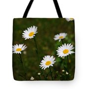 All The Daisies Tote Bag