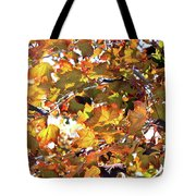 All The Leaves Are Red And Orange Fall Foliage With Sunshine Tote Bag