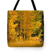 All The Soft Places To Fall Tote Bag