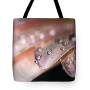 All The Tiny Details I Love About You Tote Bag