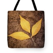 All Things Must Pass Tote Bag