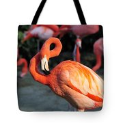 All Twisted Up Tote Bag