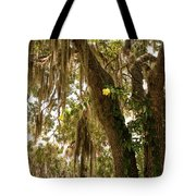 Allamanda And Oak Tree Tote Bag