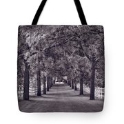 Allee Way Bw Tote Bag