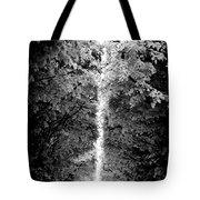 Allee_des_arbres Tote Bag