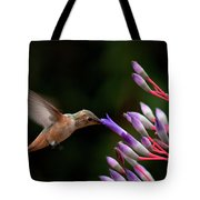 Allen's Hummingbird At Breakfast Tote Bag by Mike Herdering