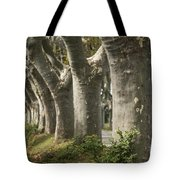 Alley Provence  Tote Bag