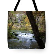 Alley Spring Branch 2 Tote Bag
