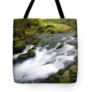 Alley Spring Branch Tote Bag