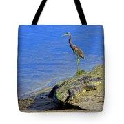 Alligator And Blue Heron Tote Bag