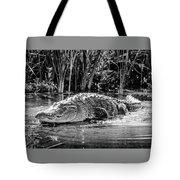 Alligator Bags Of Port Aransas Tote Bag