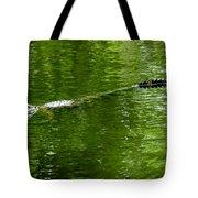 Alligator In Wait Tote Bag