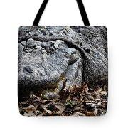 Alligator Waiting Tote Bag