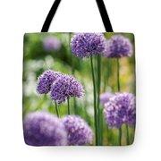 Allium 5 Tote Bag