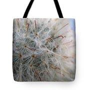 Allium Sativum Tote Bag