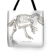 Allosaurus Skeleton Tote Bag