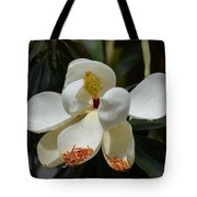 Alluring Moment Tote Bag