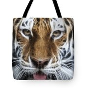 Alluring Tiger Tote Bag