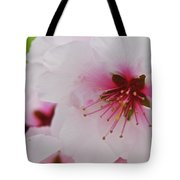 Almond Blossom Tote Bag