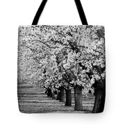 Springtime In The Almond Fields Tote Bag