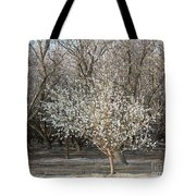 Almond Orchard 1 Tote Bag