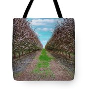 Almond Trees Of Button Willow Tote Bag