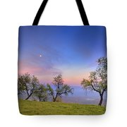 Almonds And Moon Tote Bag