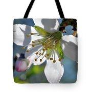 Almonds In Lachish 1 Tote Bag