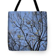 Almost Bare With Birds II Tote Bag