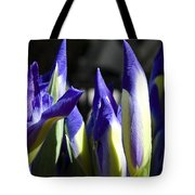 Almost Blooming - The Iris Tote Bag