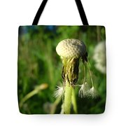 Almost Gone Dandelion Seeds Tote Bag