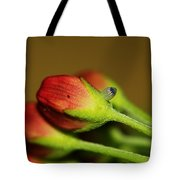 Almost Time Tote Bag by April Wietrecki Green