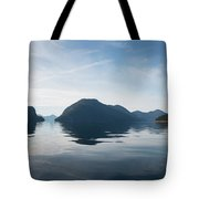 Almost To Shearwater Tote Bag