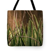 Aloe 3 Tote Bag