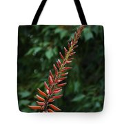 Aloe Flower Tote Bag