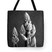 Aloe Maculata Stalk Tote Bag