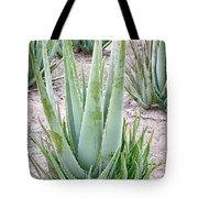 Aloe Vera Plant Tote Bag