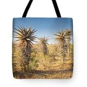 Aloe Vera Trees Botswana Tote Bag