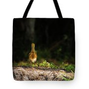 Alone And Searching Tote Bag