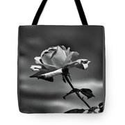 Alone I Stand Tote Bag