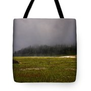 Alone In Fog Tote Bag