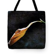 Alone In The Fall Tote Bag