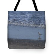 Alone In The Sand Tote Bag