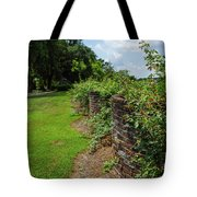 Along The Curved Wall Tote Bag