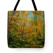 Along The Lock And Dam Trail Tote Bag