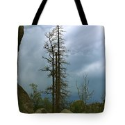 Along The Needles Highway Tote Bag