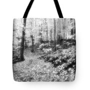 Along The Path Bw  Tote Bag