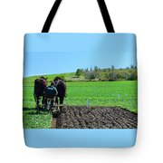Along The Row Four  Tote Bag