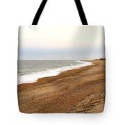 Along The Tide Line Tote Bag